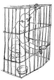 示意图:铁笼子